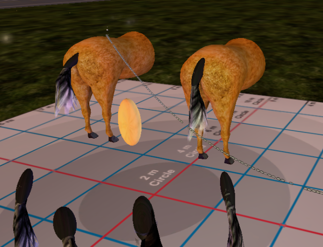 Thank you RAG for our horse - hindquarters