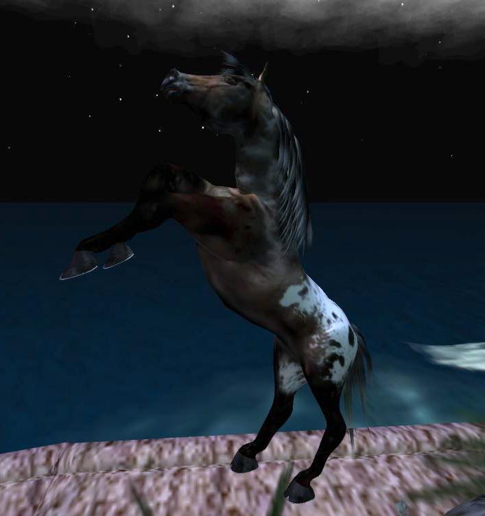 im-a-horse_001