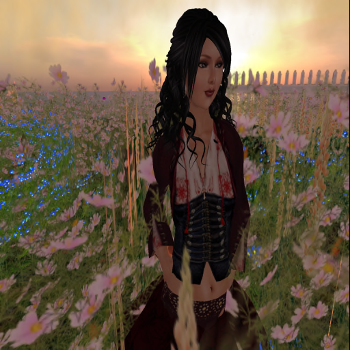 Violet at Wanderstill